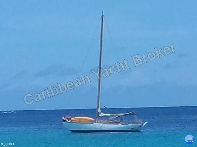 Custom Build 36 Caribbean Yacht Broker